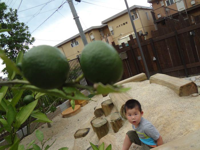 渋川の園庭より